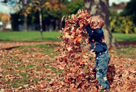 Fall Fun with My Son