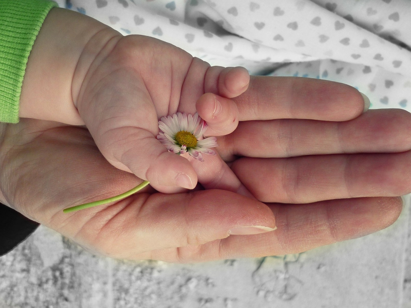 sa_1527582169_flower-kid-parent