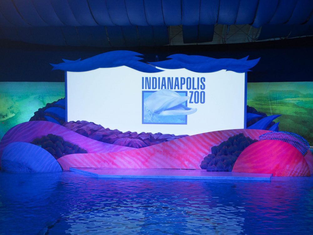 Indianapolis Dolphin Show