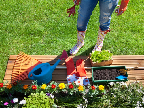 spring cleaning your lawn and garden